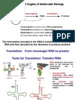 5.  Translation.pdf