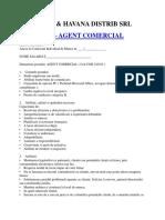 Fisa Post Agent Comercial
