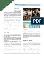 queso y leche.pdf