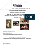 Manualdepracticas16-1515