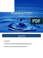 Workshop Catt