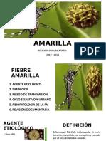 Fiebre Amarilla Chikungunya