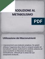 Introduzione Al Metabolismo1