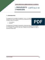 Cap Vii Cronograma, Presupuesto y Garantia Financiera