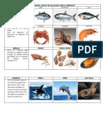 Especies Del Mar Peruano