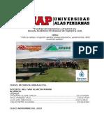 Visita de Campo Corregido PDF
