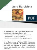 Estructura Narcisista