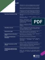 malla_cajero_financiero.pdf