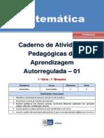 Matematica Regular Professor Autoregulada 1s 1b