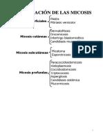 Clasificacion de La Micosis