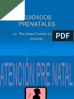 CUIDADOS PRENATALES.ppt