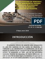 Eduardo Fernandez Informe Final 2