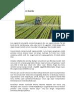 Agrilkultur Pertanian Di Belanda