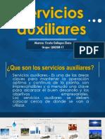 Servicios Auxiliares Elena Ocaña