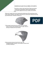 Dokumen.tips Berbagai Bentuk Paruh Dan Kaki Unggas Serta Fungsinya