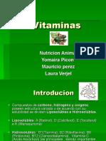 Vitaminas Nutriicion Animal