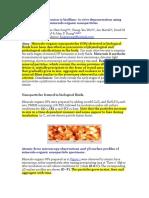 Nanoparticle Conversion to Biofilms