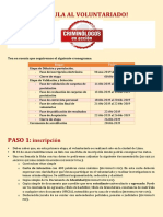 PDF Instructivo Para La Postulación Al Voluntariado