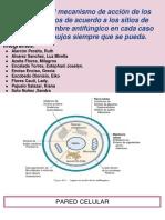 mecanismo de accion de antifungicos.pptx