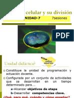 UD-7 El Núcleo Celular y Su División