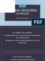 aula6-sistemasensorialveterinria-170523165113