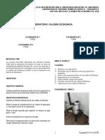Guia Caldera de Biomasa