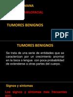 009 Novena Semana Tumores Benignos