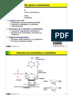 DNA-genomas.pdf