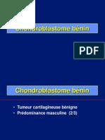 08- Chondroblastome