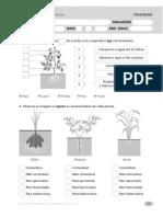 Ficha Avaliação Plantas 1