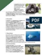 8 Animales en Peligro de Extinción