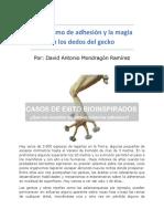 Mecanismo de Adhesión y La Magia en Los Dedos Del Gecko