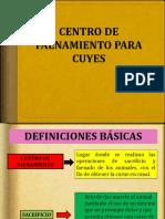 CENTRO DE FAENAMIENTO PARA CUYES.pptx