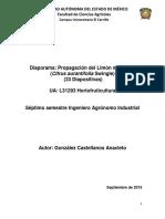 PROPAGACIÓN DEL LIMON.pdf