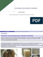 Rotas de Producao de Biodiesel -Incompleto