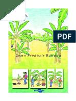 BANANA -Como Produzir.pdf