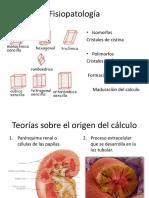 Urolitiasis-Fisiopatología