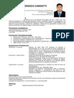 Cv Victorandresmendozacandiotti 1