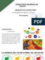 Cromatografía de carotenoides yo solita .pptx