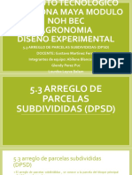 5.3 Arreglo de Parcelas Subdivididas (Dpsd)