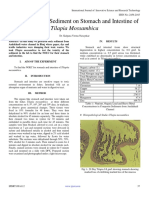 Impact of Toxic Sediment on Stomach and Intestine of Tilapia Mossambica
