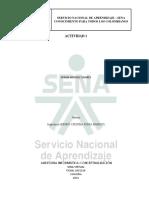 276817828-Actividad-1-Auditoria-de-Sistemas.docx