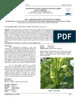 A Review on Abelmoschus Esculentus (Okra)