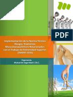 3.+Manual+implementación+Paso+a+Paso+TMERT-EESS