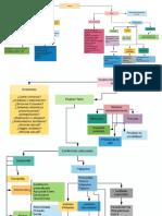 Mapa Conceptual semiologia de la piel