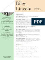 riley lincoln resume