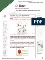 El Vino de Baco_ Principios de La Cata_ Examen Visual