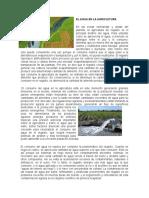 El Agua en La Agricultura