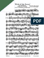 BirdsForest.pdf