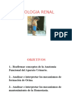 6 Fisiologia Renal